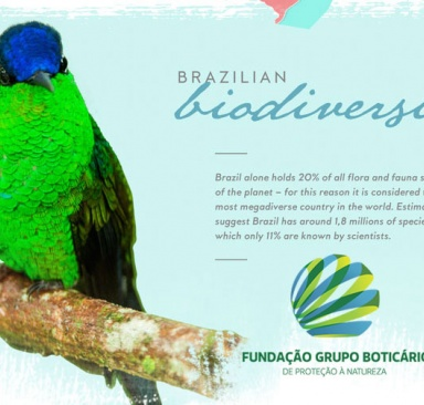 BIODIVERSITY CONSERVATION AND BUSINESS – IS THAT POSSIBLE? LET´S FIND OUT TOGETHER!